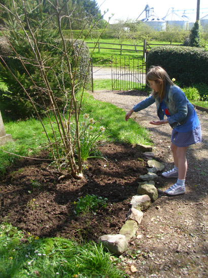 "Lydia Baggott planting poppy seeds. They are special ""flanders poppy seeds"" with donations from every packet sold going to the Royal British Legion."